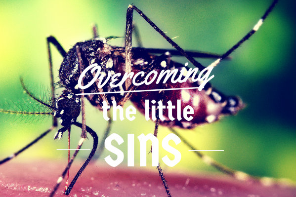 the-little-sins1