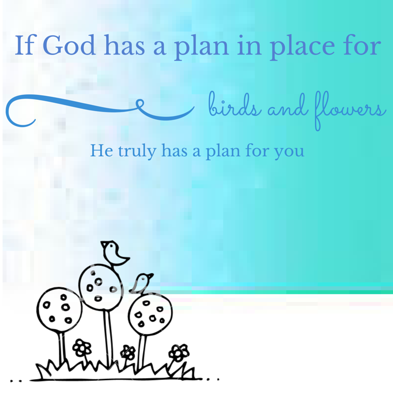 If God has a plan in place for birds and